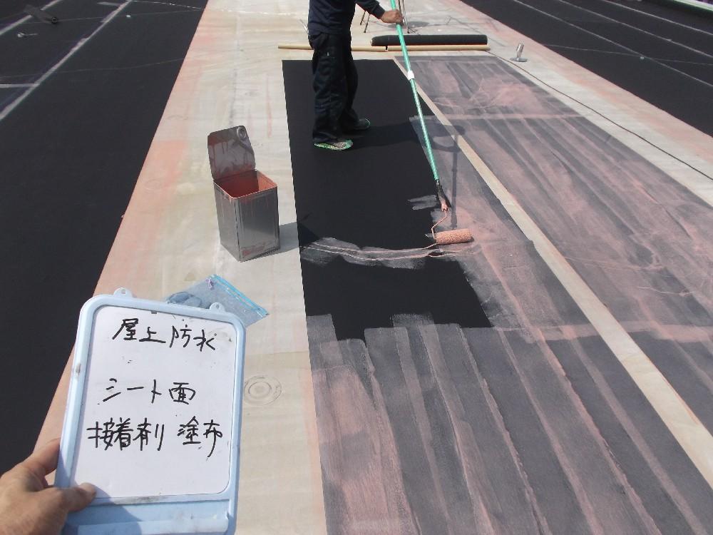 屋上防水・接着剤塗布中です