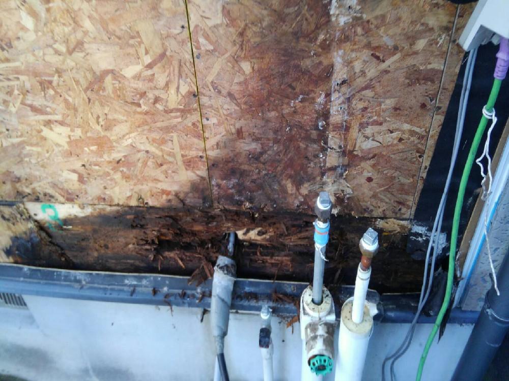 外壁材を剥いだら水浸しになっていました。お風呂場のサッシからの湿気の侵入が原因と